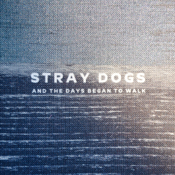 New release with new artist – Stray Dogs!