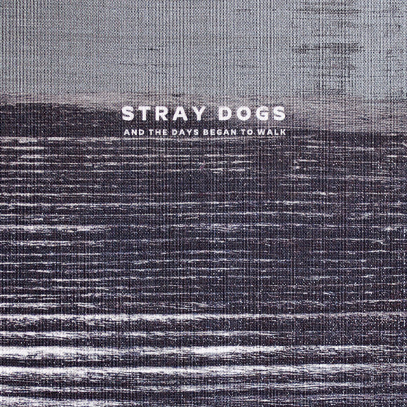 "Stray Dogs ""And The Days Began To Walk"""
