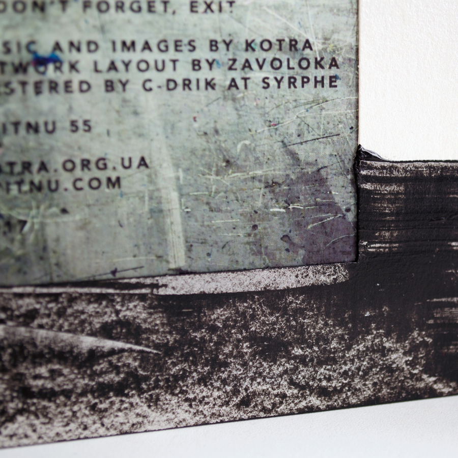 Kotra - Cicada (Kvitnu 55)