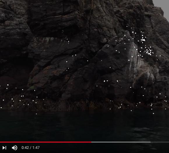 """Sturqen """"Torso"""" – a new video"""